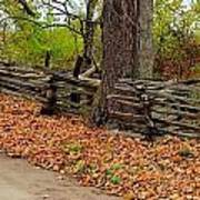 Old Wooden Fence Art Print