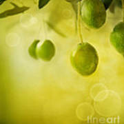 Olives Design Background Art Print by Mythja  Photography