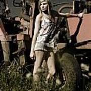 On The Farm At Dusk Art Print