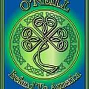 O'neill Ireland To America Art Print