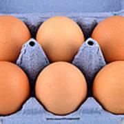 Organic Eggs Art Print