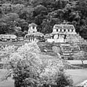 Palenque City Art Print