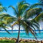 Palm Trees And Sea Art Print