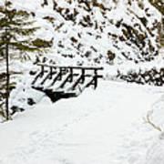 Pathway Through The Snow Art Print