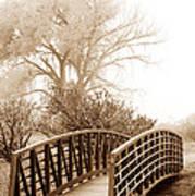 Pedestrian Bridge Art Print