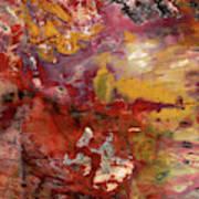 Petrified Wood Detail Art Print