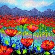 Poppy Vista Art Print