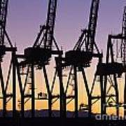 Port Of Seattle Cranes Silhouetted Art Print