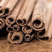 Portion Of Cinnamon Art Print