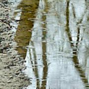 Raindrops On Reflections II Art Print