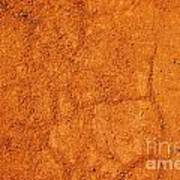 Red Earth Or Soil Background Art Print