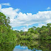 Reflection Of Trees And Clouds In South Art Print