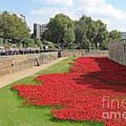 Remembrance Poppies At Tower Of London Art Print