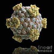 Reovirus Core Art Print