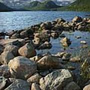 Rocky Shoreline In Acadia National Park Art Print