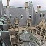 Roof Of Biltmore Estate Art Print