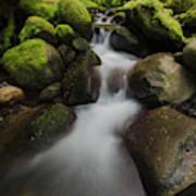 Ruckel Creek  Oregon, United States Art Print