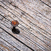 Rusty Nail In An Old Wooden Board Art Print
