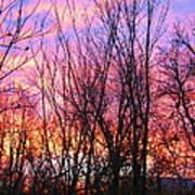 Red Sky In Morning Art Print