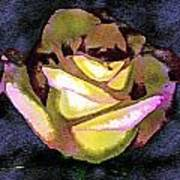 Scanned Rose Water Color Digital Photogram Art Print