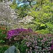 Serene Garden Art Print
