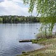 Serene Lake View Art Print