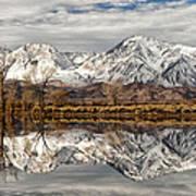 Sierra Reflections Art Print