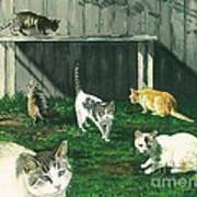 Six Cats Art Print