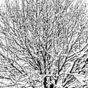 Snow Cover Art Print
