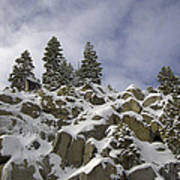 Snow Covered Cliffs And Trees Art Print