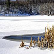 Snow On Lake Art Print