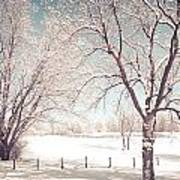 Snowy Trees On The Erie Canal Art Print