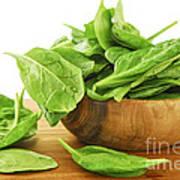 Spinach Art Print by Elena Elisseeva