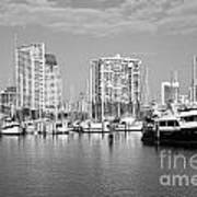 St Petersburg Yacht Basin Art Print
