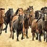 Stampede Of Wild Horses Art Print