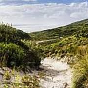 Strahan Coast Landscape Winding To The Ocean Art Print