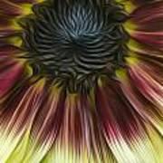 Sunflower In Oils Art Print