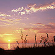 Sunset Over The Sea, Venice Beach Art Print