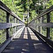 Suspension Bridge Art Print by Susan Leggett