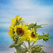 Swaying In The Breeze 2 Art Print
