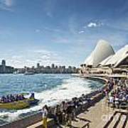 Sydney Harbour In Australia By Day Art Print