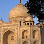Taj Mahal In Evening Light Art Print