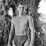 Tarzan The Ape Man, Johnny Weissmuller Art Print