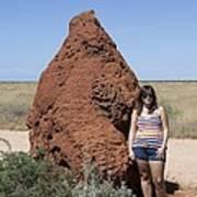 Termite Mound, Exmouth Western Art Print