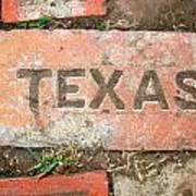 Texas Brick Art Print