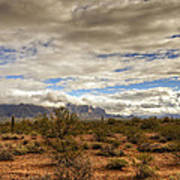 The Desert Southwest  Art Print