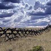 The Fence Art Print