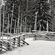 The Fence Of Kovero Art Print