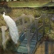 The Foot Bridge Art Print