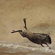 The Great Migration- Wildebeest Crossing  Art Print